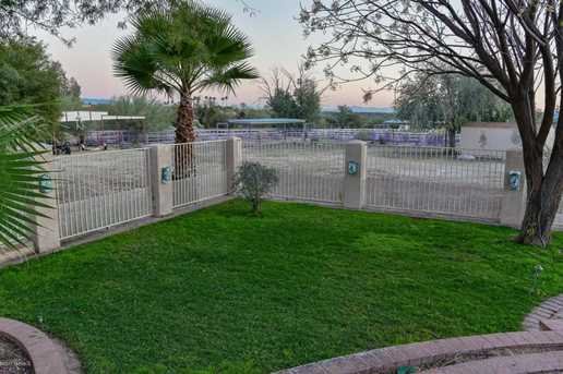 9909 N La Cholla (Set Back 1/4 Mile) Blvd - Photo 38
