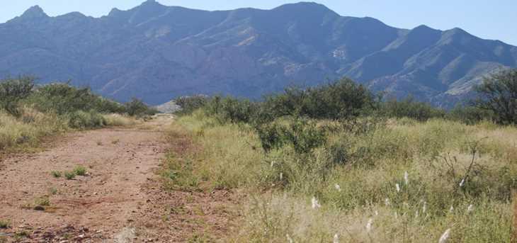 Desert Road - Photo 6