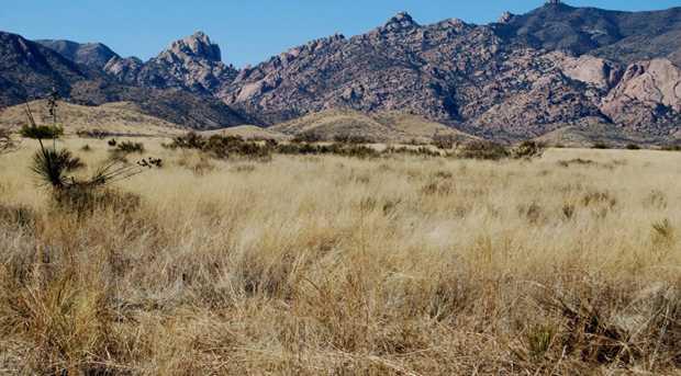 Desert Road - Photo 1