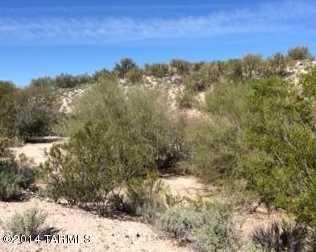 10950 Desert Whisper Way #20 - Photo 4