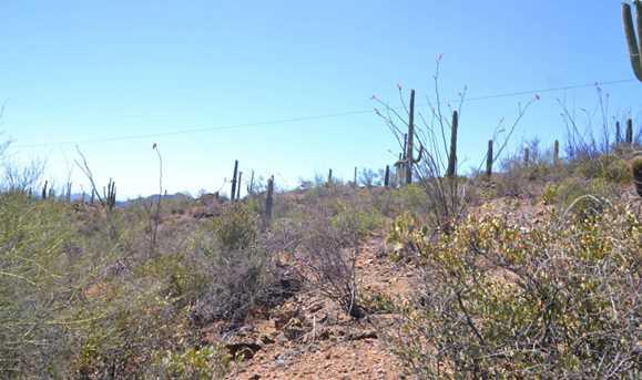 7001 El Camino Del Cerro - Photo 12