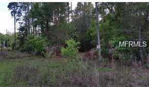 Bear Paw Ln - Photo 1