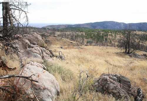 0 Davis Ranch Rd - Photo 32