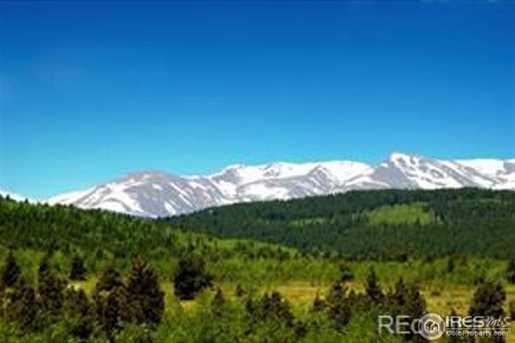 2 Bald Mountain Rd - Photo 4