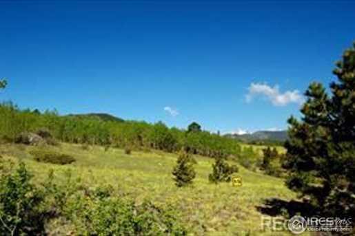 2 Bald Mountain Rd - Photo 2