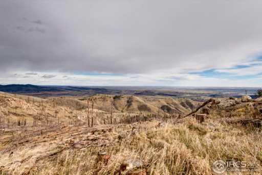33 Hernia Hill Trail - Photo 6
