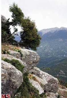 1000 Thestieon  Agrinio  Aitolia  Akarnania  Greece - Photo 30
