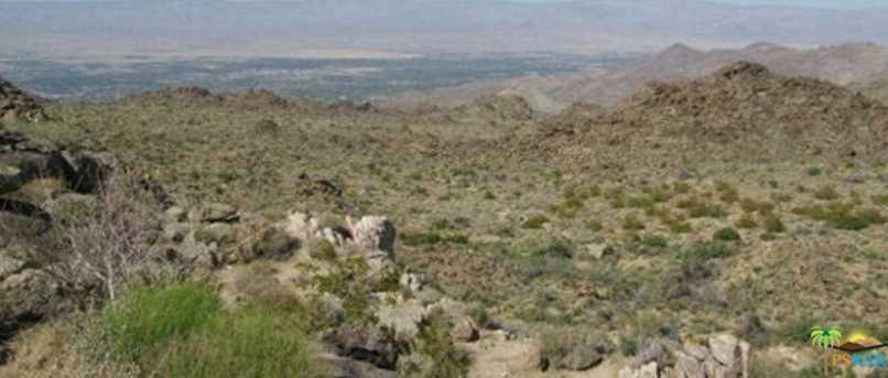 0 Desert Calico-Lot 22 - Photo 12
