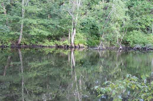 Pond Gut - Photo 2