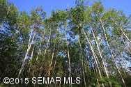 Tbd Siems (L6B3) Lane NE - Photo 8