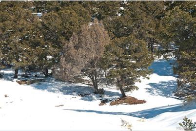 4312 & 4313 Craggy Bluff Ol - Photo 1