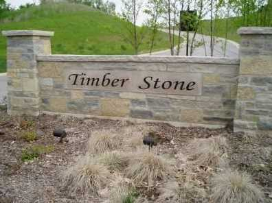 Lt51 Timber Stone Subdivision - Photo 1