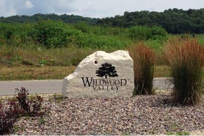 Lot 34  Willow Wood - Photo 1