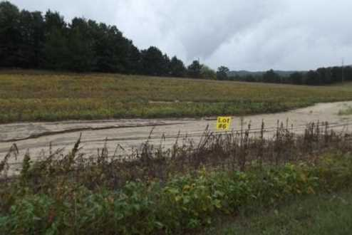 4.65 +or-  Highway 71 - Photo 1