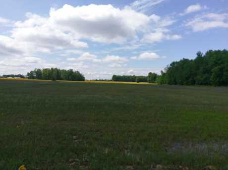 N County Line Rd - Photo 4