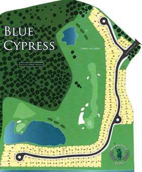 2853 Blue Cypress Lane - Photo 2