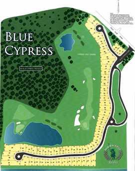 3024 Blue Cypress Lane - Photo 2