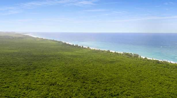Zav State Road 187 Puerto Rico - Photo 8