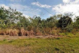 Tbd Seminole Road - Photo 1