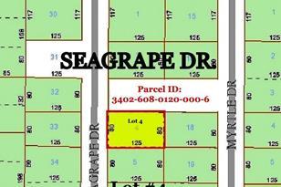 Seagrape Dr. Lot 4 Drive - Photo 1