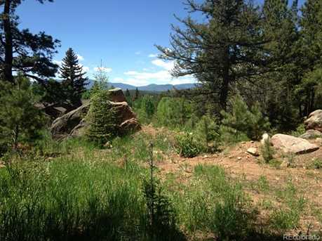 30929 Bear Cub Trail - Photo 8