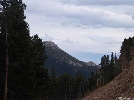 7 Bull Moose Run - Photo 10