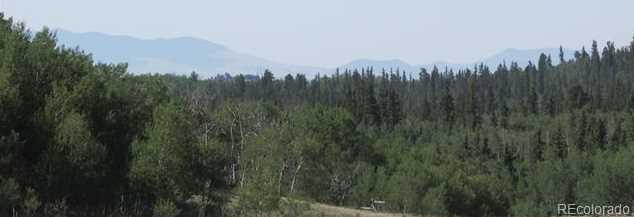 907 Pinto Trail - Photo 2