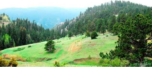 Douglas Mountain Drive - Photo 1