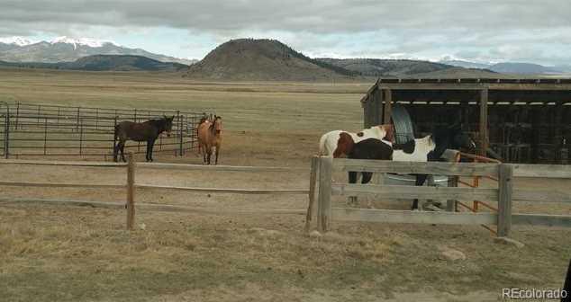 9798 & 9736 Ranch Road - Photo 10