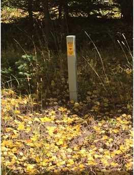 2474 Wendt Lane - Photo 8