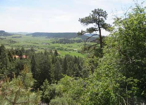 1000 Mountain Ranch Road - Photo 2