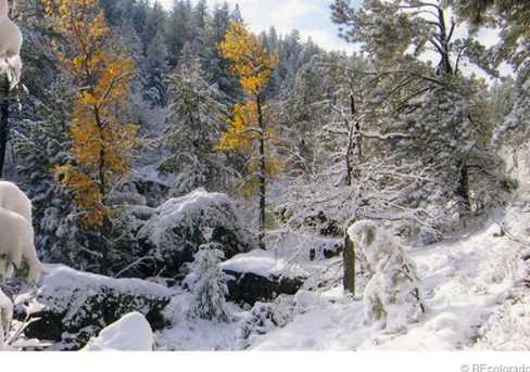 6585 Lost Canyon Ranch Road - Photo 32