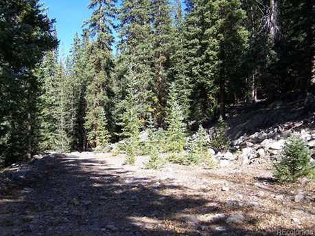 Forest Service Road 295 - Photo 22