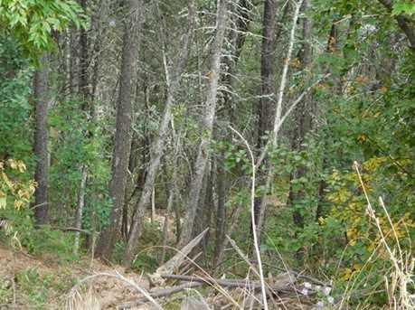 13670 Spruce Creek Circle - Photo 20