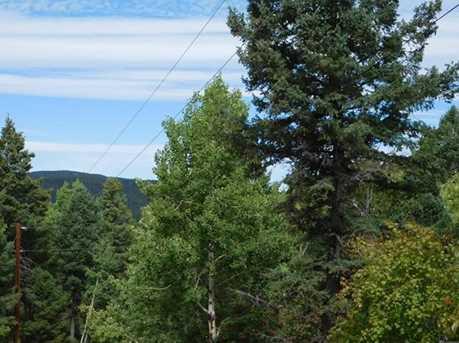 13670 Spruce Creek Circle - Photo 16