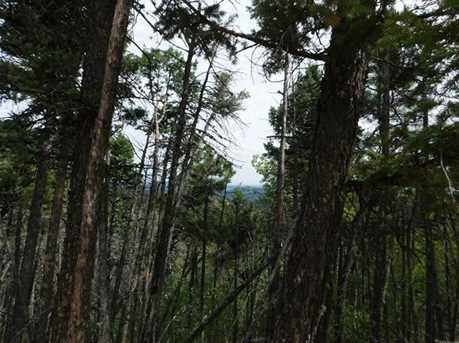 13670 Spruce Creek Circle - Photo 10