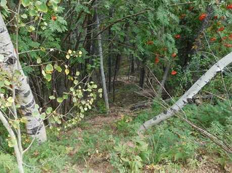 13670 Spruce Creek Circle - Photo 22