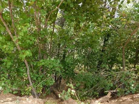 13670 Spruce Creek Circle - Photo 18
