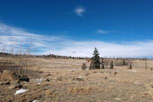 1041 Chief Trail - Photo 1