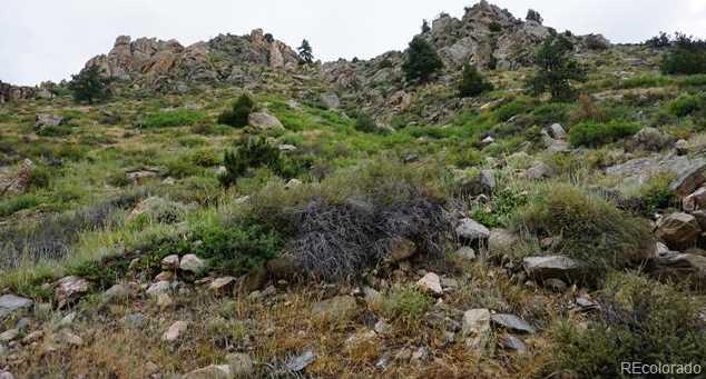 32370 Poudre Canyon Road - Photo 4