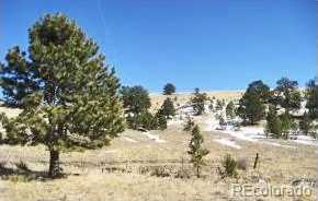 1282 Fremont County Road 169A - Photo 4