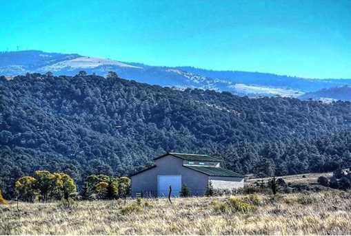 1610 Timber Ridge Road - Photo 10