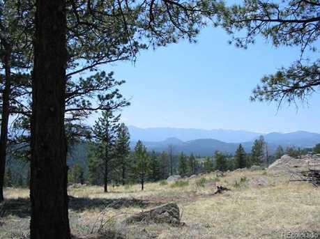 14714 Wetterhorn Peak Trail - Photo 8