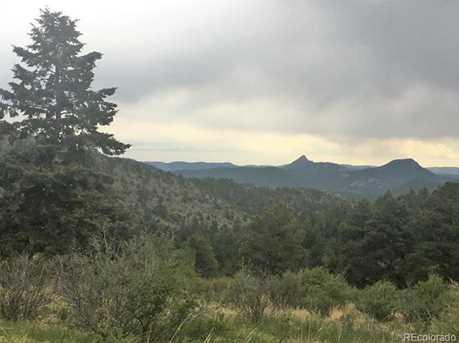 14714 Wetterhorn Peak Trail - Photo 20