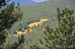 6200 Coal Creek Canyon Drive - Photo 10