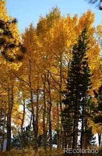 6200 Coal Creek Canyon Drive - Photo 16
