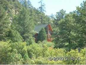 2613 Pheasant Loop - Photo 2