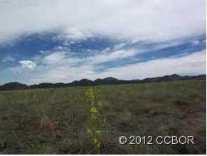 189 Deer Springs Circle - Photo 2