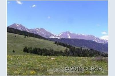Shoshone Ridge Road - Photo 1