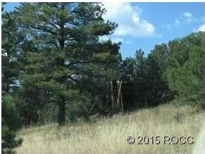 Oak Creek Drive - Photo 2